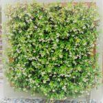 решетка для цветов, решетка для сада